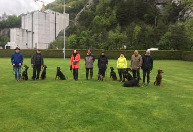 UO-Kurs bei Hundeausbildung Heini Beck GmbH, Trübbach am 11.05.2019